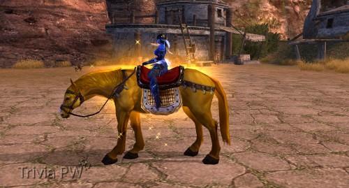 Cavalo-Dourado---WesleyHP-3.jpg