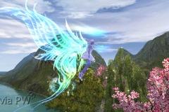 Aurora-Boreal-WesleyHP-1