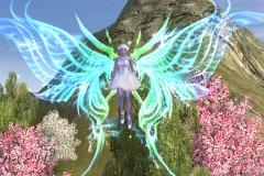 Aurora-Boreal-WesleyHP-2