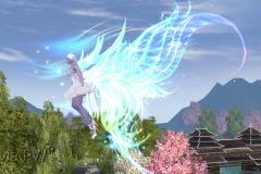 Aurora-Boreal-WesleyHP-3