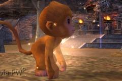 Bebê-Wukong-WesleyHP-1