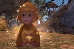 Bebê-Wukong-WesleyHP-2