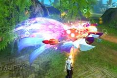 Brilho-do-Peixe-Celestial-WesleyHP-1