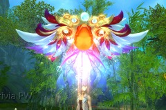 Brilho-do-Peixe-Celestial-WesleyHP-2