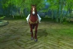 Cavalo-de-Hanxue-WesleyHP-2