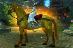 Cavalo-Dourado-WesleyHP-3