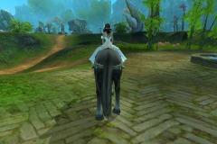 Cavalo-Wuzhui-do-Vento-WesleyHP-4