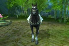 Cavalo-Wuzhui-WesleyHP-2