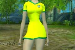 Conjunto-Brasil-Feminino-10