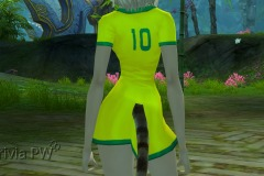 Conjunto-Brasil-Feminino-12