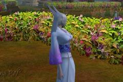 Conjunto-Kimono-Feminino-09