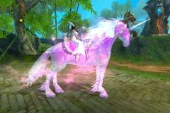 Cosmos-Púrpura-WesleyHP-1