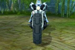 Cronocicleta-WesleyHP-2
