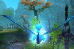 1_Dragão-Azulado-WesleyHP-4