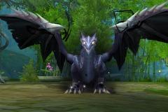 Dragão-de-Guerra-WesleyHP-2