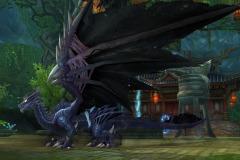 Dragão-de-Guerra-WesleyHP-3