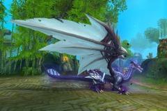 Dragão-Venerável-WesleyHP-1