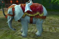 Elefante-das-Nuvens-do-Vento-WesleyHP-3