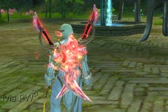Espadas-da-Flor-de-Aço-WesleyHP-4