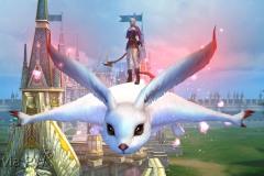 Esquilo-Voador-WesleyHP-2