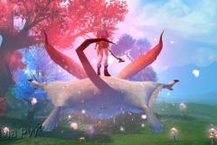 Esquilo-Voador-WesleyHP-4