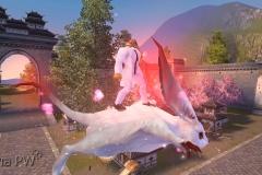 Esquilo Voador - WesleyHP (1)