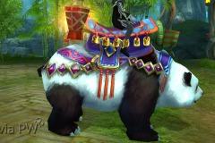 Filhote-de-Panda-Pequeno-Mau-WesleyHP-1