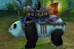 Filhote-de-Panda-Pequeno-Mau-WesleyHP-3