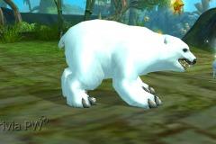 Filhote-de-Urso-WesleyHP-1