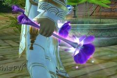 Flor-de-Cerejeira-WesleyHP-3