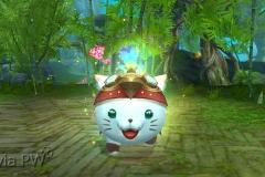 Gato Espírito da Neve - WesleyHP (2)
