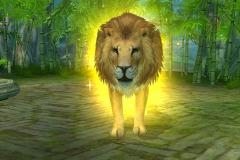 Leão-Dourado-WesleyHP-2