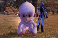 Macaco-da-Neve-Bebê-WesleyHP-2