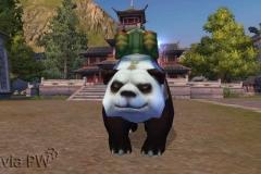 Panda Imperial - WesleyHP (2)