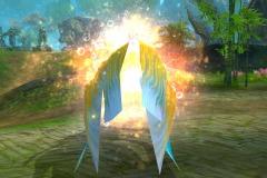 Peixinho-Dourado-das-Maravilhas-WesleyHP-4