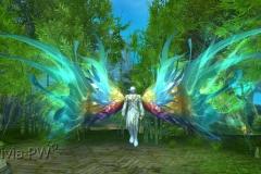 Pétala-Luminosa-WesleyHP-2