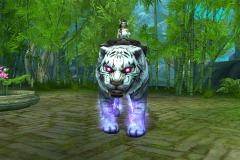 Predador-Branco-Especial-WesleyHP-2