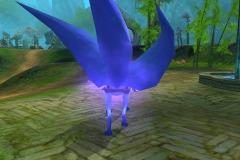 Raposa-Púrpura-WesleyHP-4
