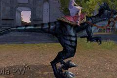 Raptor-Negro-WesleyHP-1