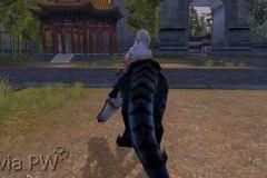 Raptor-Negro-WesleyHP-4