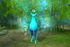 Rena-Espiritual-Verde-Água-WesleyHP-2