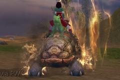 Tartaruga-Dragão-Imperial-WesleyHP-4