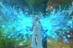 Toque-Azul-Gelado-WesleyHP-2