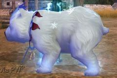 Urso-Polar-WesleyHP-3